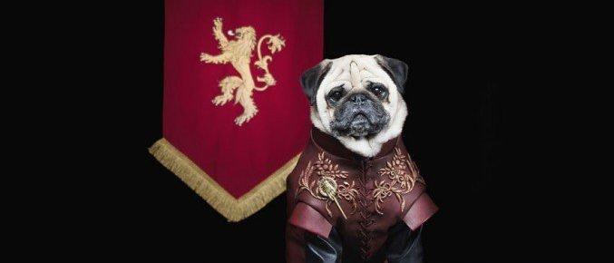 Disfraz de perro Jofrey