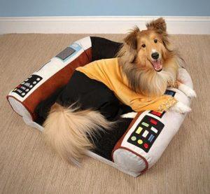 Disfraz perro star-trek con sillon de mando incluido