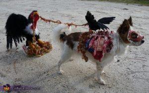 Perro zombie devorado por pájaros.