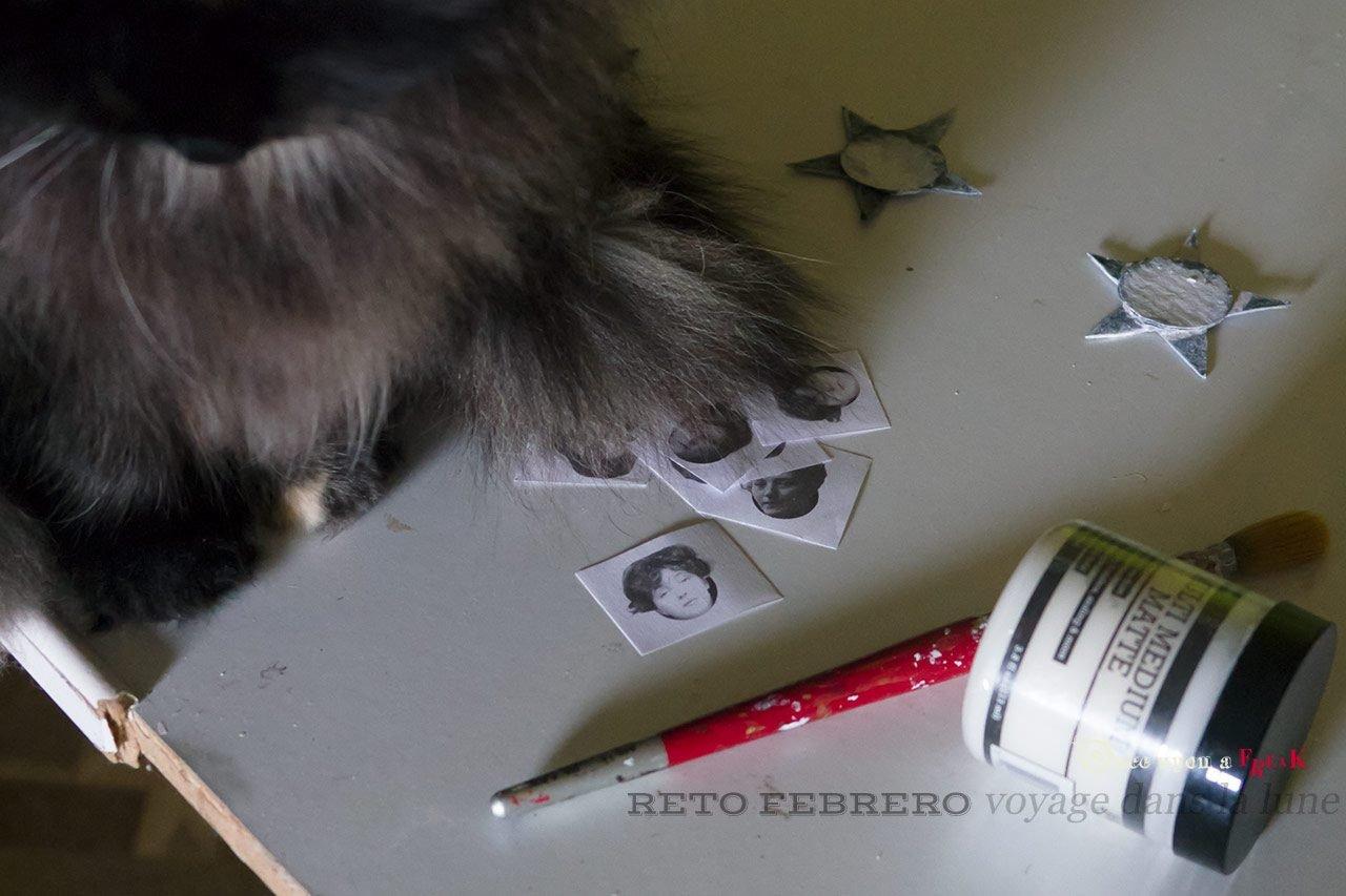 gato y materiales